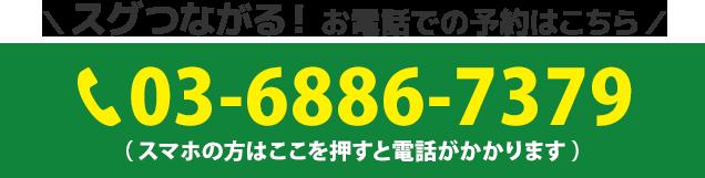電話番号:03-6886-7379